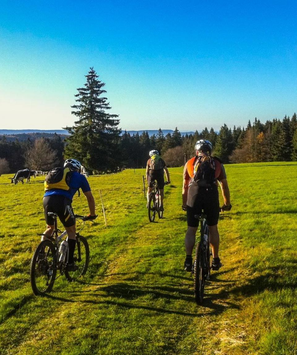 Ascension-Alsac-Vosges-1-2-by-Swiss-Bike-Tours