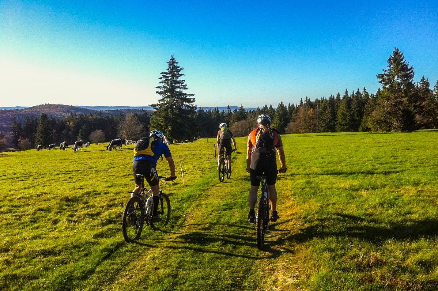 Auffahrt Elsass - Vogesen Wochenende mit Biker Gruppe im Abendlicht