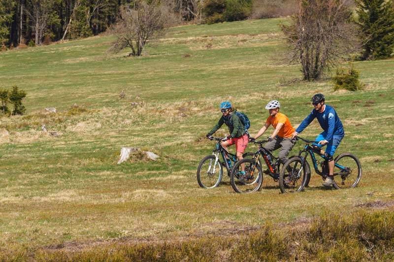 drei Biker im Elsass