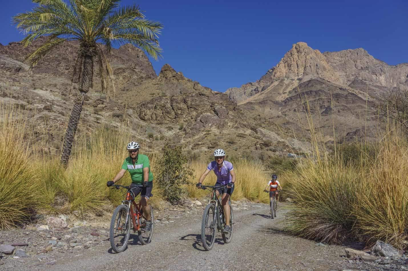 Oman Mountainbike Tour drei Mountainbiker in einem Gebirgswhadi im Oman