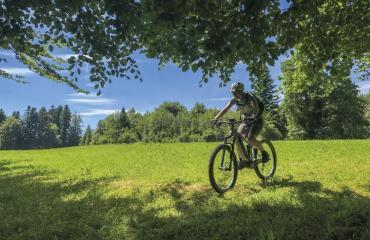 E-Bike-Basic-3-1-by-Swiss-Bike-Tours
