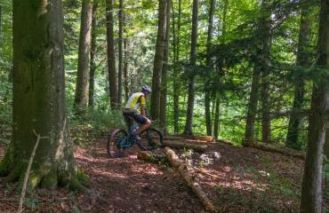 E-Bike-Intermediate-3-3-by-Swiss-Bike-Tours