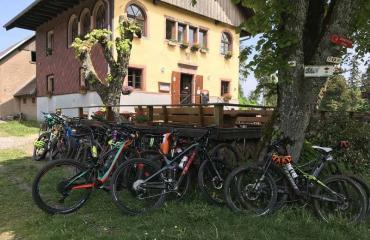 Elsass-Vogesen-Week-3-2-by-Swiss-Bike-Tours