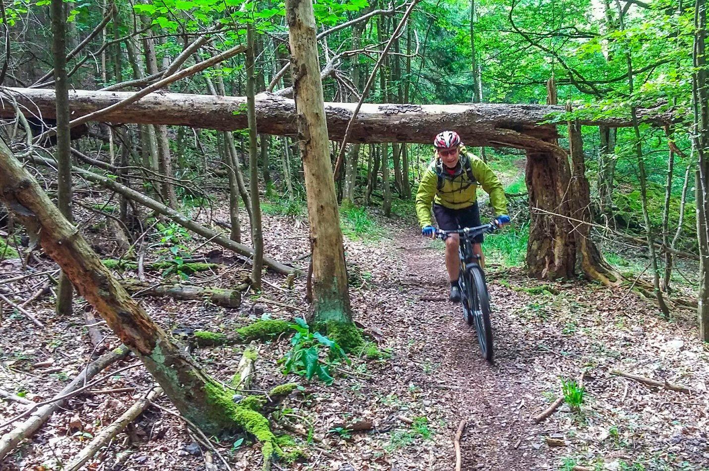Elsass - Vogesen Wochenende mit einem Biker auf wunderschönem Wald Trail