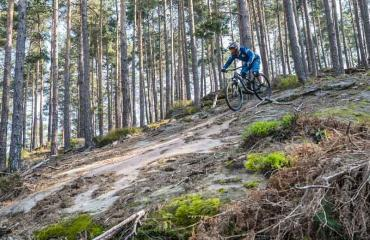 Freeride-Elsass-Felsplatte-by-Swiss-Bike-Tours