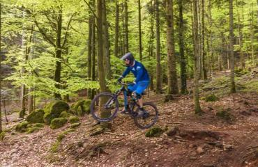 Freeride-Elsass-Gallerie-4-by-Swiss-Bike-Tours