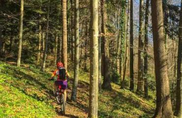 Intermediate-2-3-by-Swiss-Bike-Tours