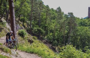 Ladies-Alsac-Vosges-2-7-by-Swiss-Bike-Tours