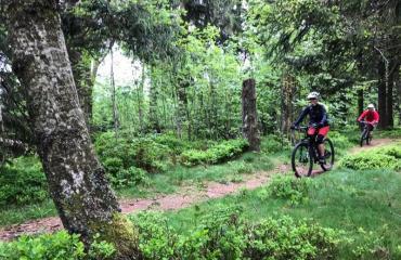 Ladies-Alsac-Vosges-2-8-by-Swiss-Bike-Tours