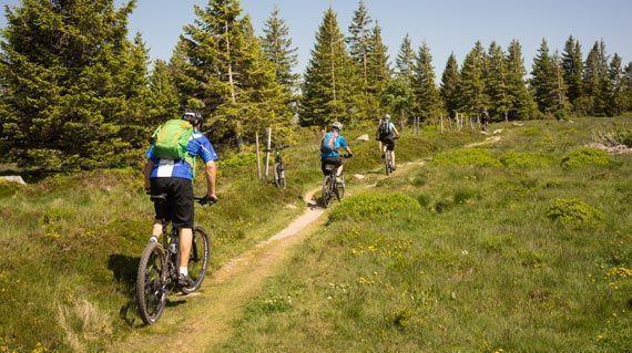 Ladies-Alsac-Vosges-Woche-2-1-by-Swiss-Bike-Tours