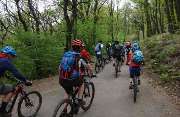Singletrail-Weekend-Classes-Ticino-3-7-by-Swiss-Bike-Tours